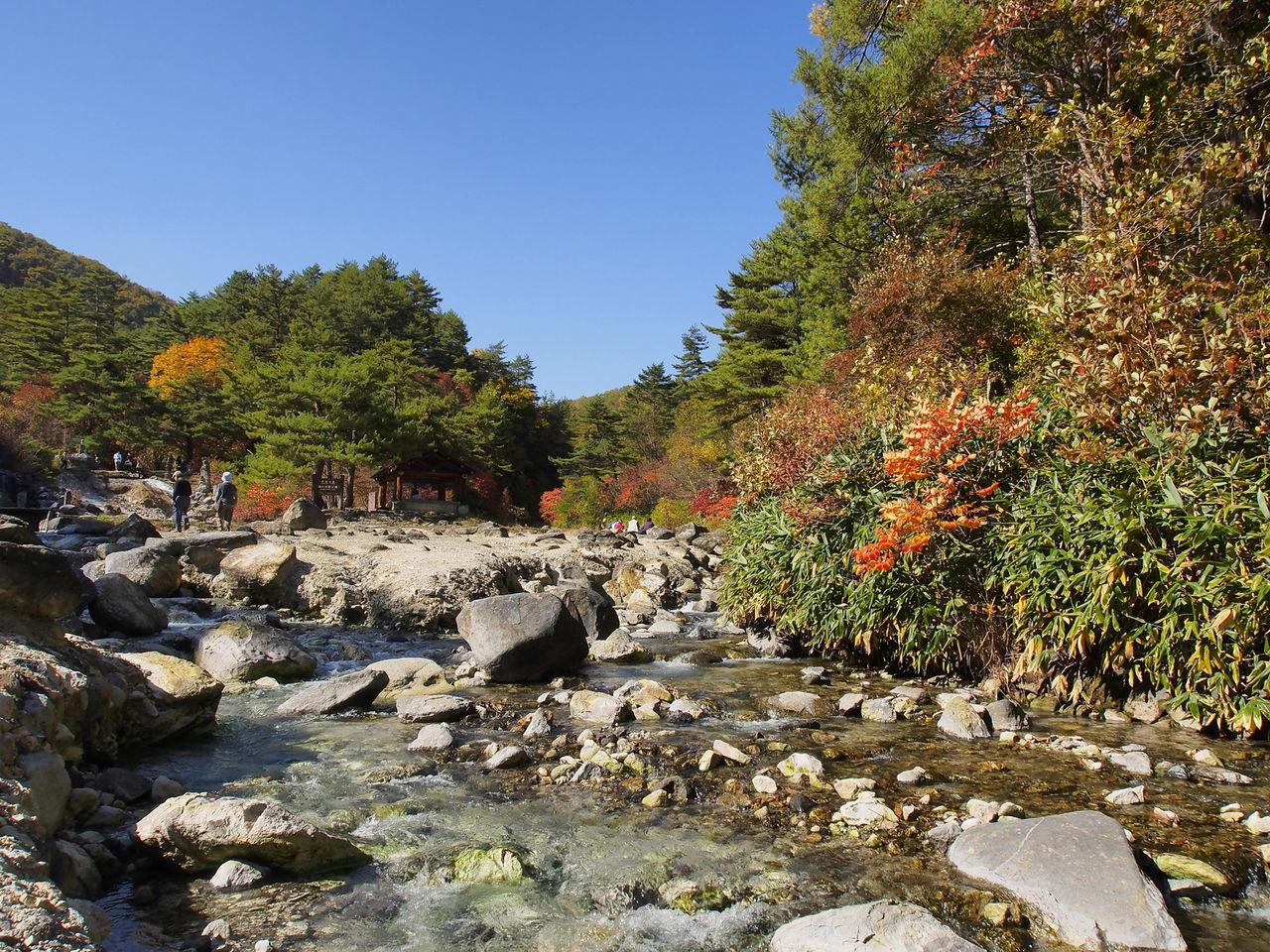 Поток в парке Сай-но-кавара