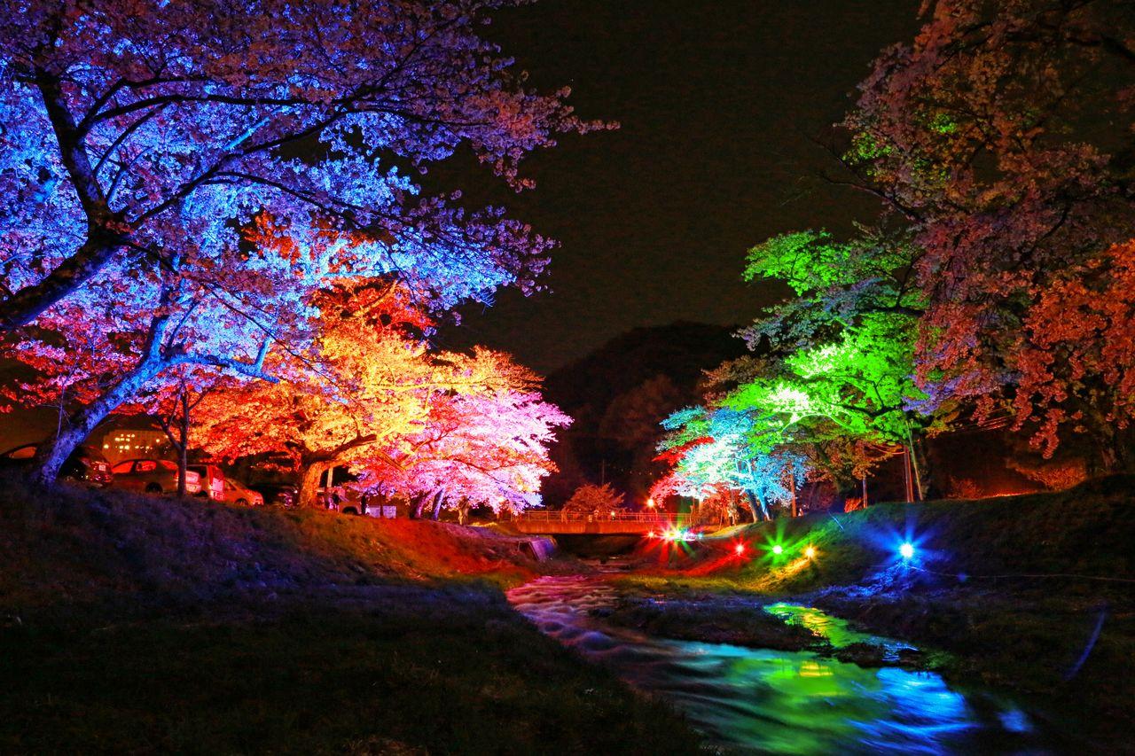 Ночная радужная подсветка (фотография предоставлена отделом туризма, торговли и промышленности города Инавасиро)