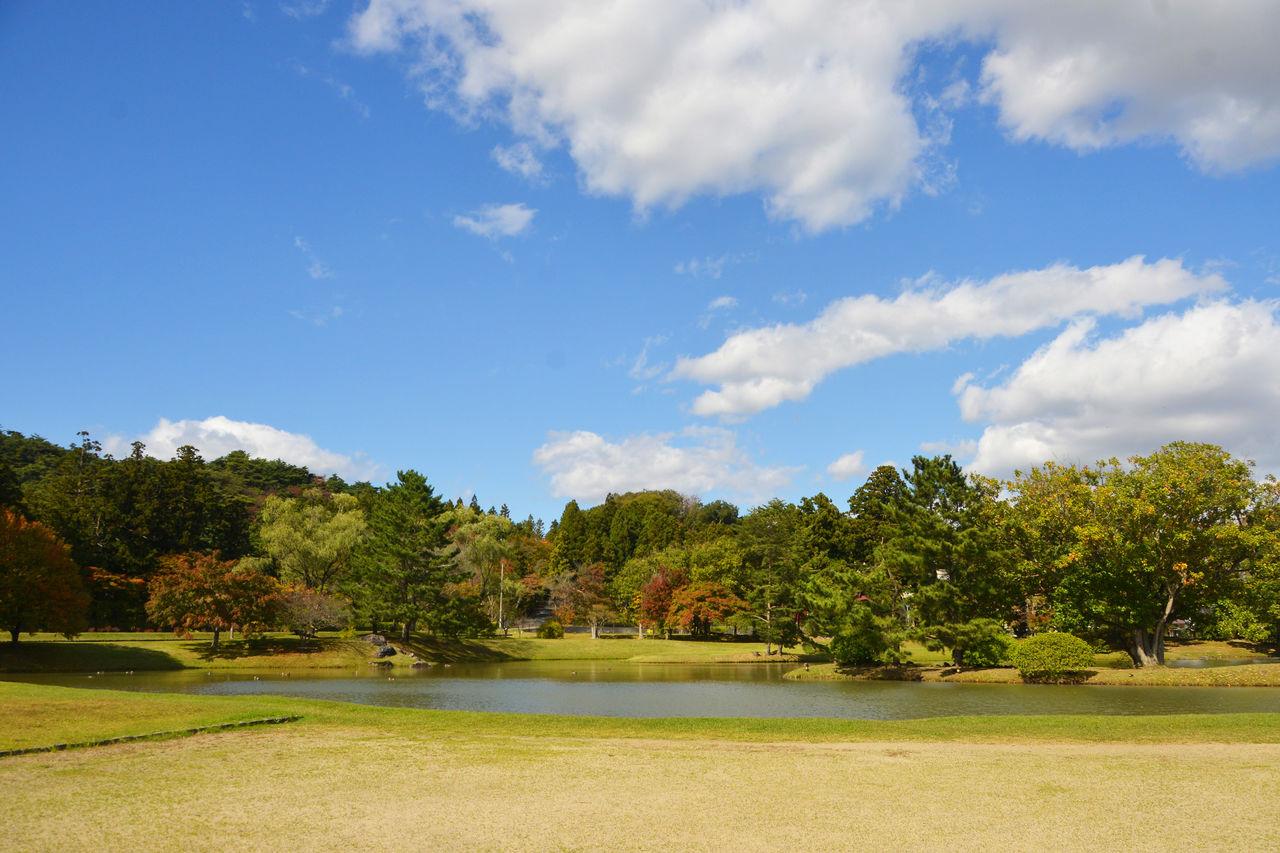 После реставрации и благоустройства сада Чистой земли территория храма Кандзидзайоин стала уютным местом отдыха(© Shoepress)