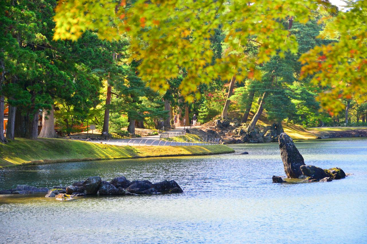 Скалистый островок в пруду Оидзуми-га-икэ в саду Чистой Земли