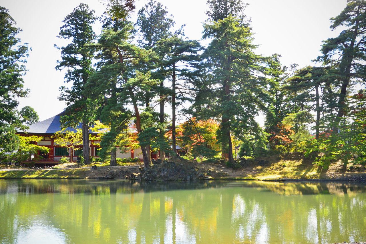 Главный павильон стоит у скалистого обнажения на берегу Ооидзуми-га-икэ