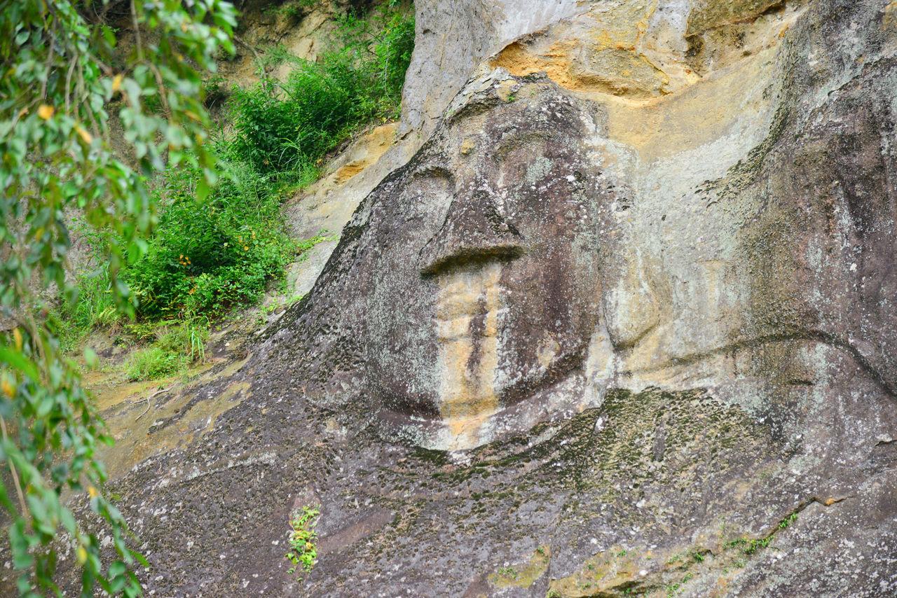 На скале высечено большое изображение Будды