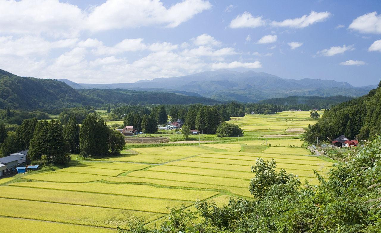 Пейзаж поместья сёэн Хонэдэра-мура почти в том же виде сохранил вид, который имел в средневековые времена (фотография предоставлена префектурой Иватэ)