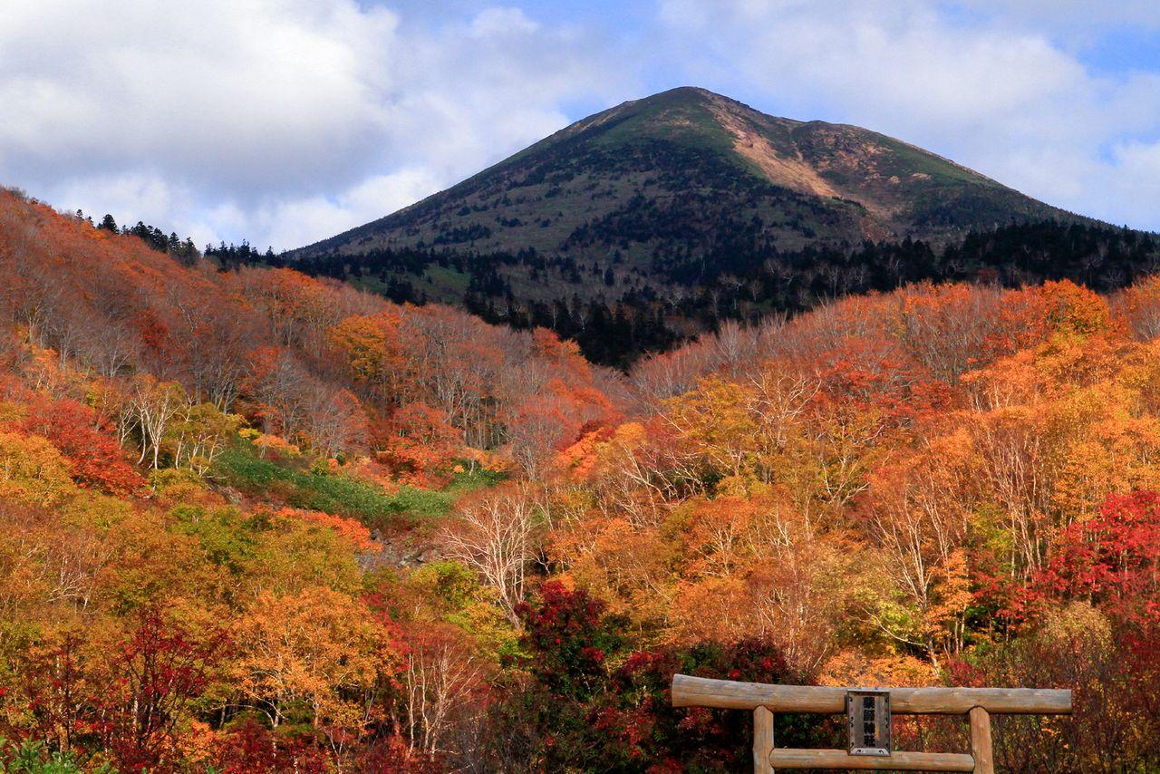 Вершина Одакэ в горах Хаккода и ворота-тории святилища Якуси (фотография предоставлена Федерацией туризма префектуры Аомори)