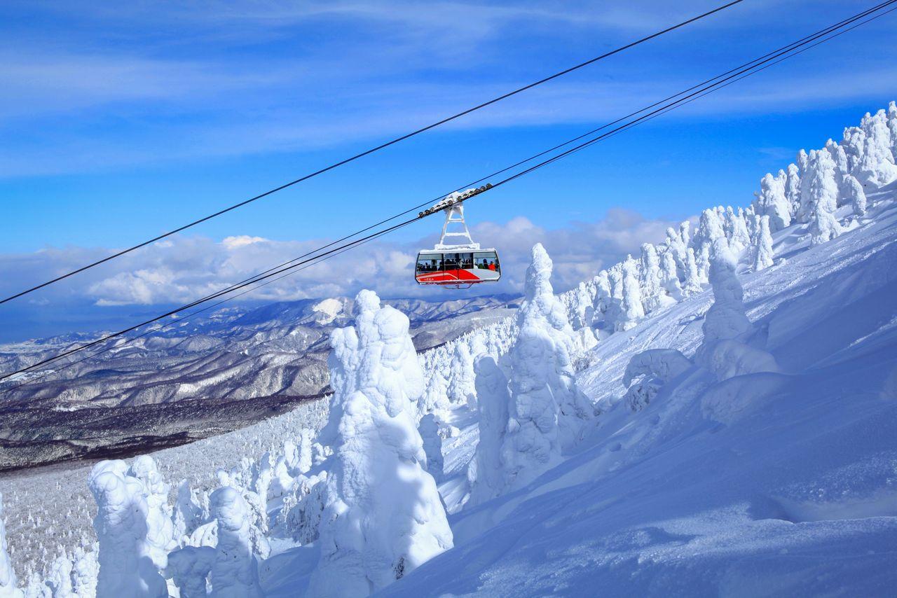 Канатная дорога Хаккода среди заснеженных горных склонов с укрытыми снегом деревьями (фотография предоставлена Организацией содействия туризму Тохоку)