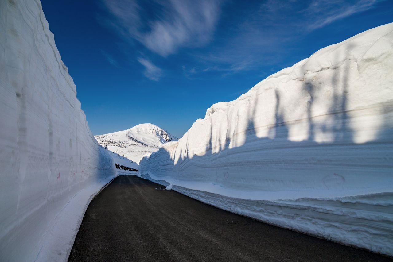 «Снежный коридор» линии Хатимантай Аспи тэрайн, высота снега может достигать 8 метров (фотография: PIXTA)