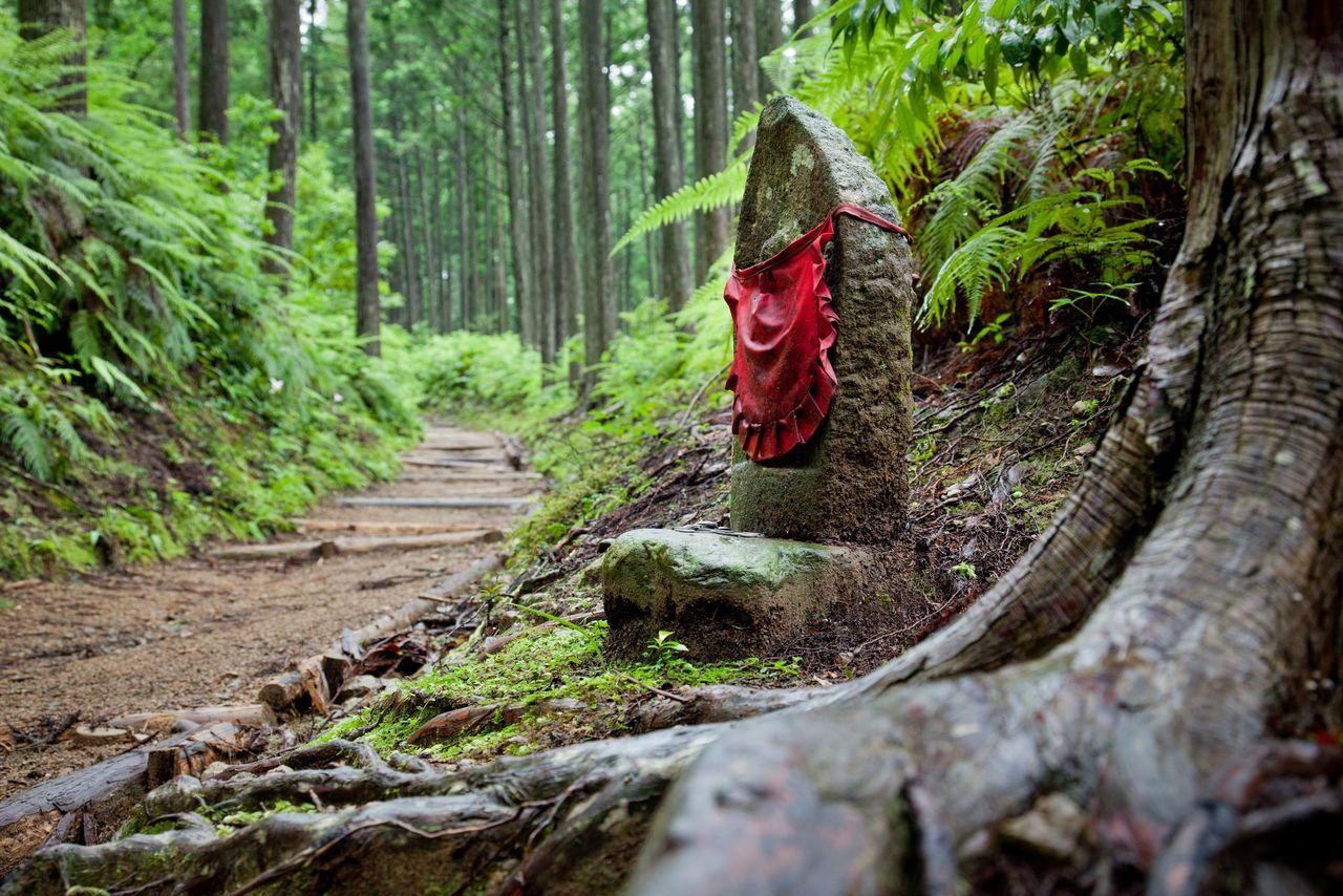 Старая дорога Кумано (фотография предоставлена общественной организацией Федерация туризма префектуры Вакаяма)