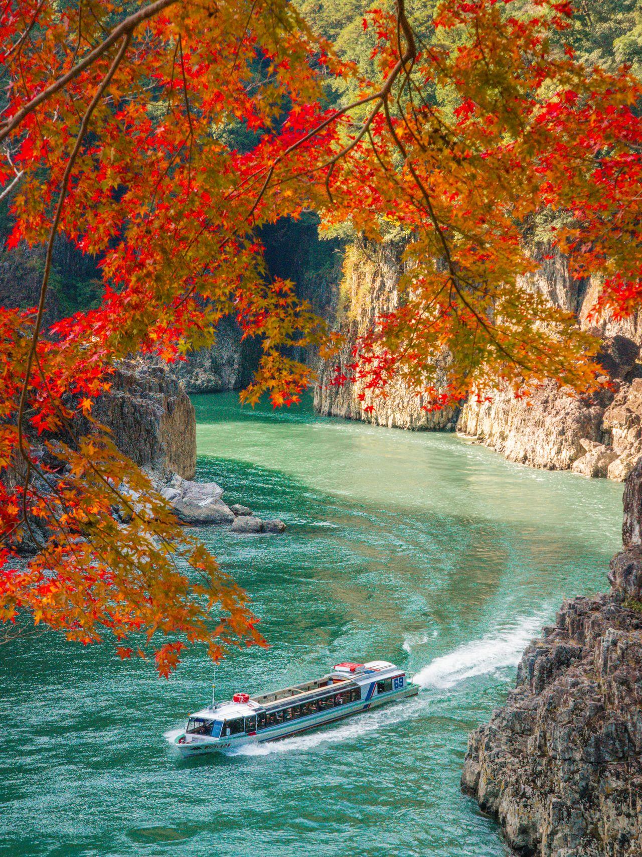 Прогулочное судно в Дорокё в период осенней листвы (фотография предоставлена Федерацией туризма префектуры Вакаяма)