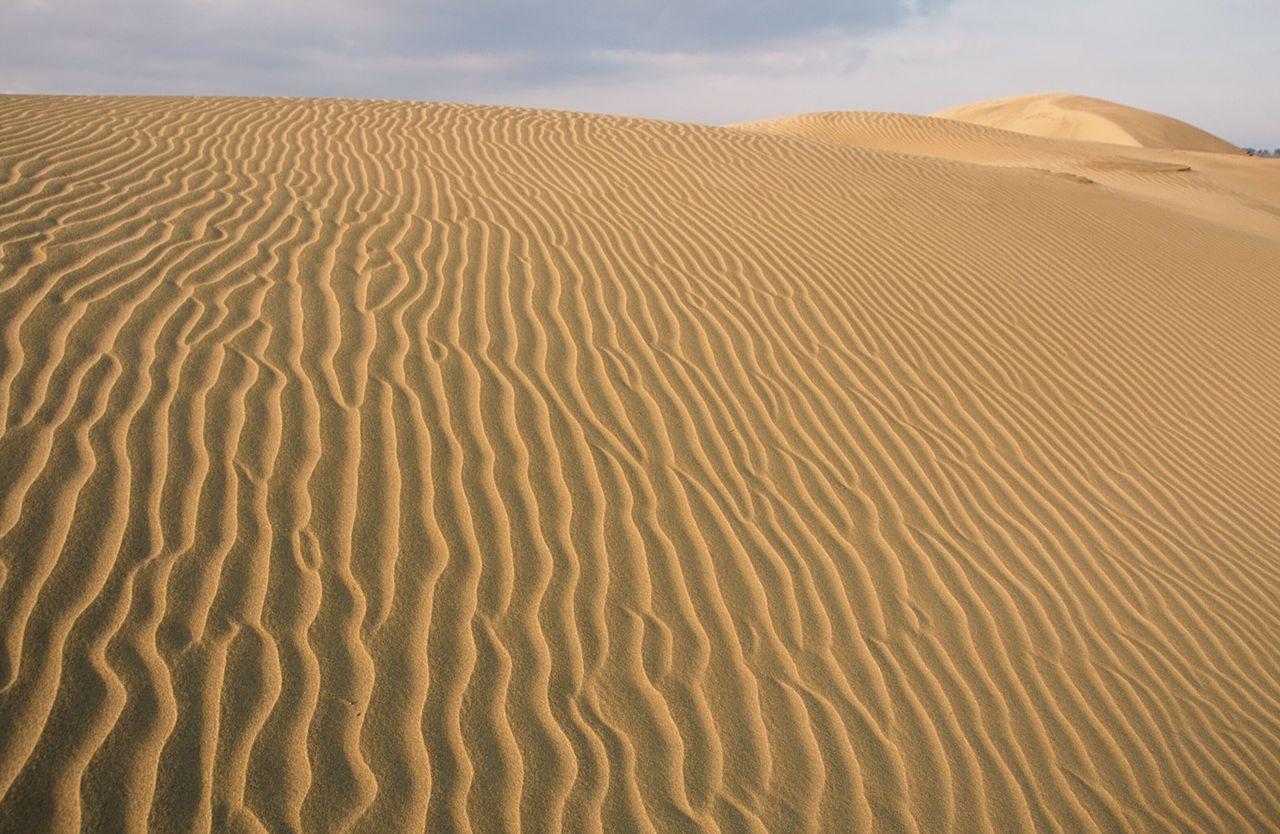 Песчаные дюны Тоттори, на которых рисунок постоянно меняется от дующих здесь ветров (фотография предоставлена префектурой Тоттори)