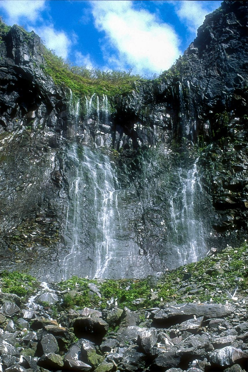 Подземные воды, просачивающиеся сквозь скальную породу и образующие водопад Фурэпэ, попадают прямо в море; этот водопад также известен как «Девичьи слезы» (предоставлено природоохранным фондом «Сирэтоко»)