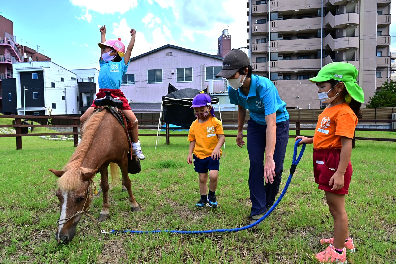 Пожилая пони Кирара дружит с детьми из детского сада