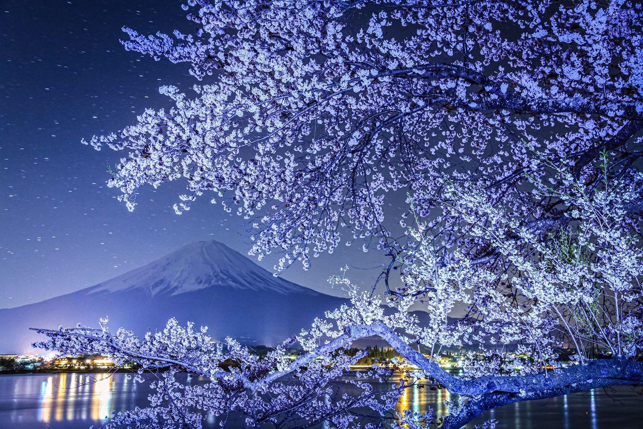 На фотографиях Хасимуки можно увидеть и приметы времён года. Он всегда тщательно относится к композиции снимков, разыскивая идеальные точки съёмки