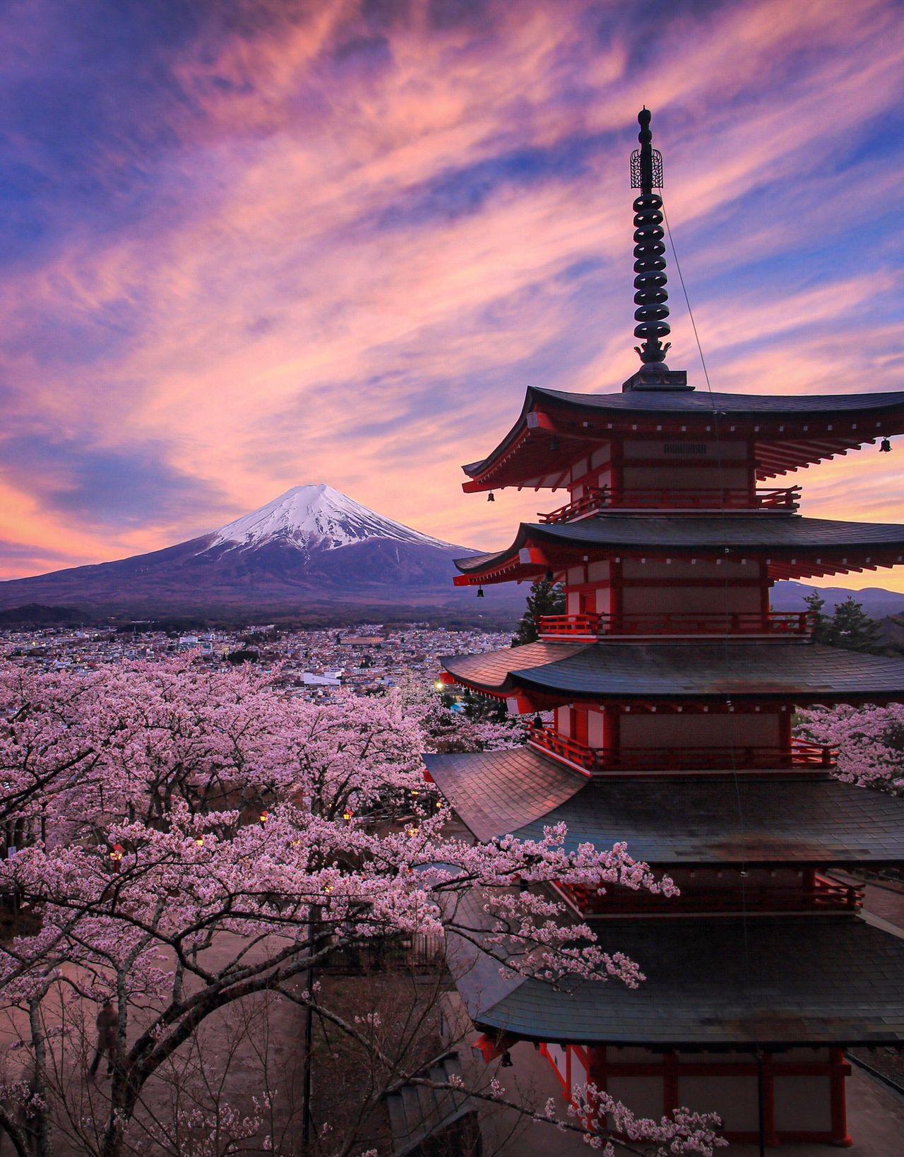 Один из самых известных ракурсов, цветущая сакура и пятиэтажная пагода в парке Аракураяма Сэнгэн в городе Фудзиёсида префектуры Яманаси. В поисках идеального места для съёмки сюда стекается масса людей, но Хасимуки выводит известный пейзаж на совершенно другой уровень