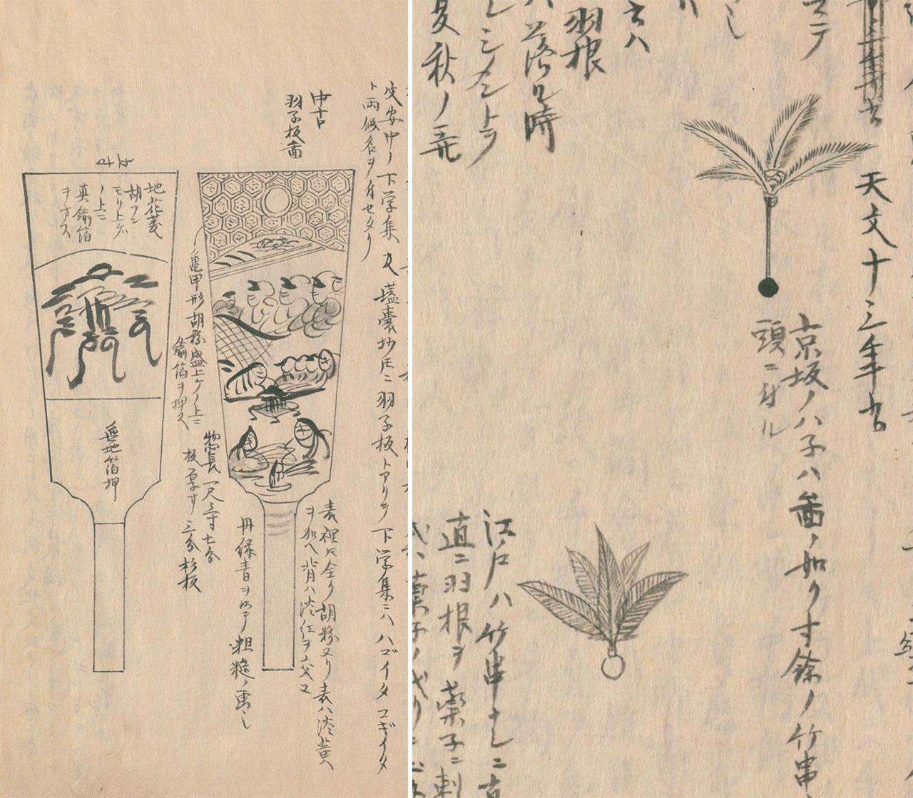 Ракетки хагоита и волан ханэ периодов Бунка и Бунсэй (1804-1831). Хагоита в Эдо украшена росписью с обеих сторон, волан в регионе Киото и Осака (вверху) длиннее, чем в Эдо (внизу), в Киото и Осаке шар и перья соединяет бамбуковый стержень, в Эдо его нет