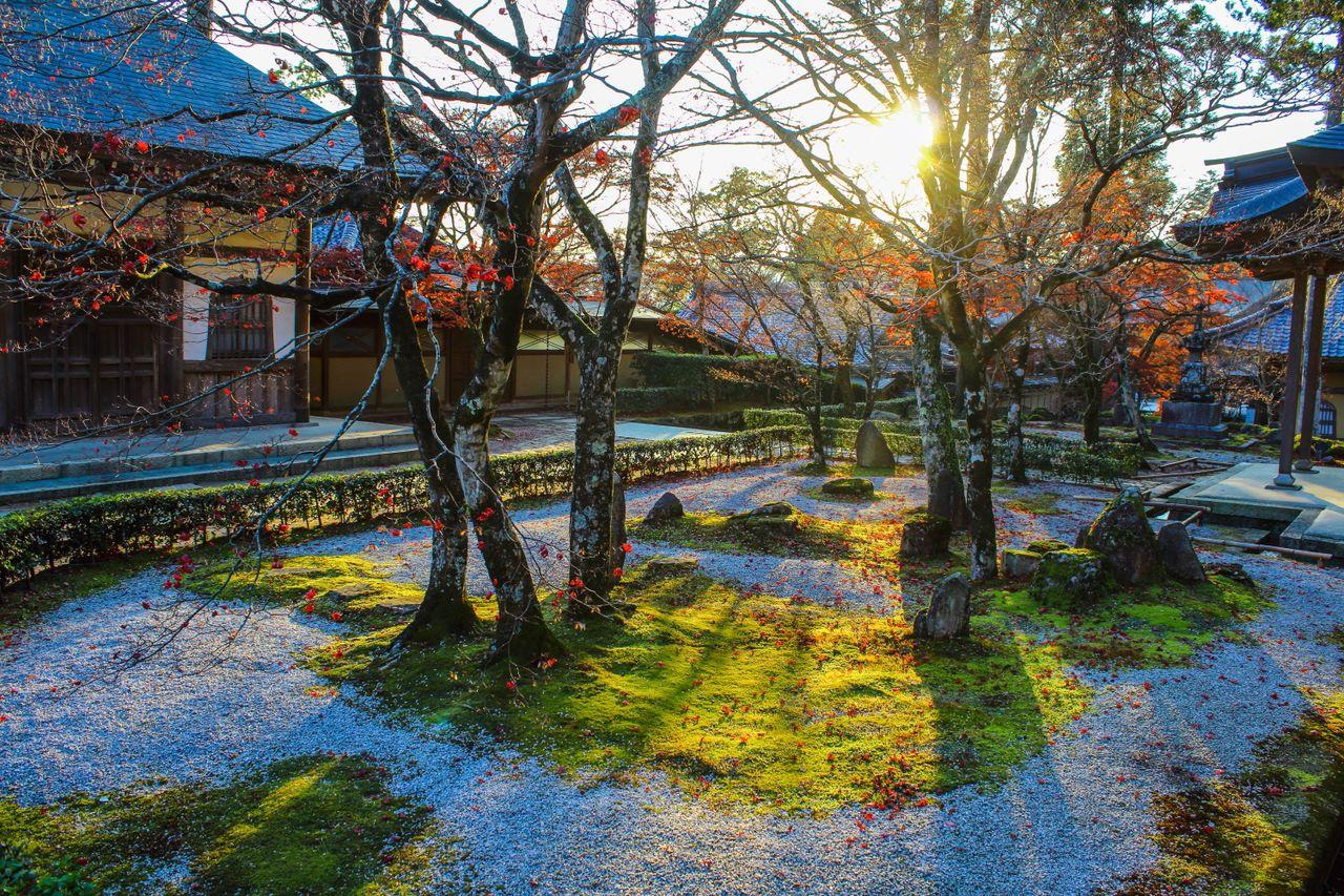 Японский сад буддийского храма Эйгэндзи в префектуре Сига наполняет дух ваби-саби (фотография автора)
