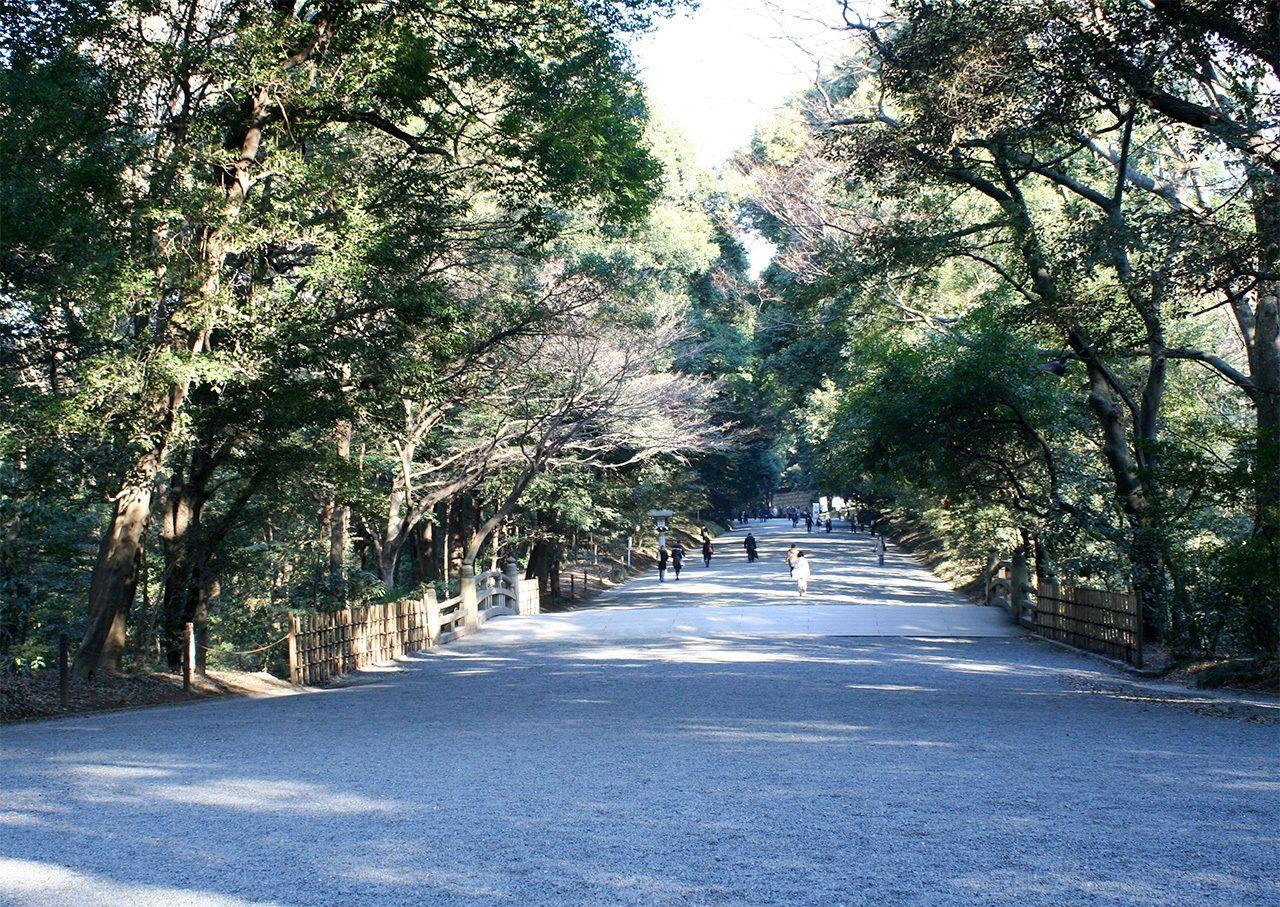 Вид территории возле моста Синкё сейчас, спустя 100 лет (фотография предоставлена святилищем Мэйдзи-дзингу) Территория возле тории Минамисандо во время строительства святилища Мэйдзи-дзингу (фотография предоставлена святилищем Мэйдзи-дзингу)
