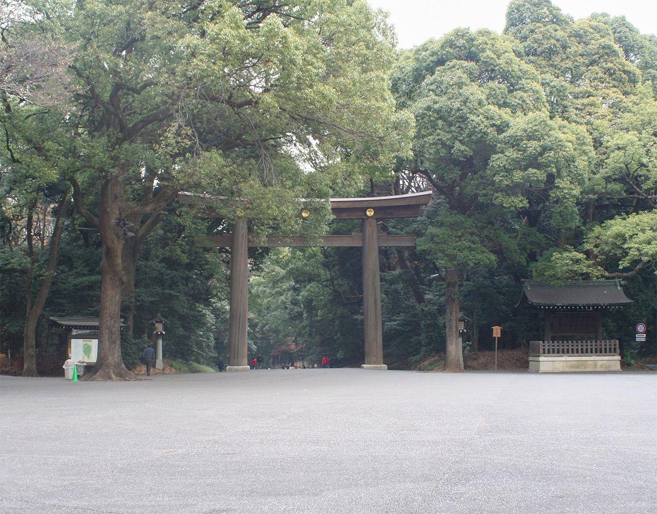 Территория возле тории Минамисандо 100 лет спустя (фотография предоставлена святилищем Мэйдзи-дзингу)
