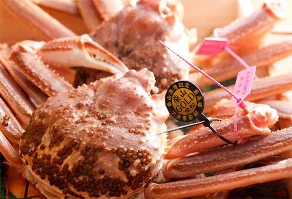 Краб Сибаяма-гани маркируется двумя бирками: розовая указывает место происхождения, а черная – рейтинг качества.