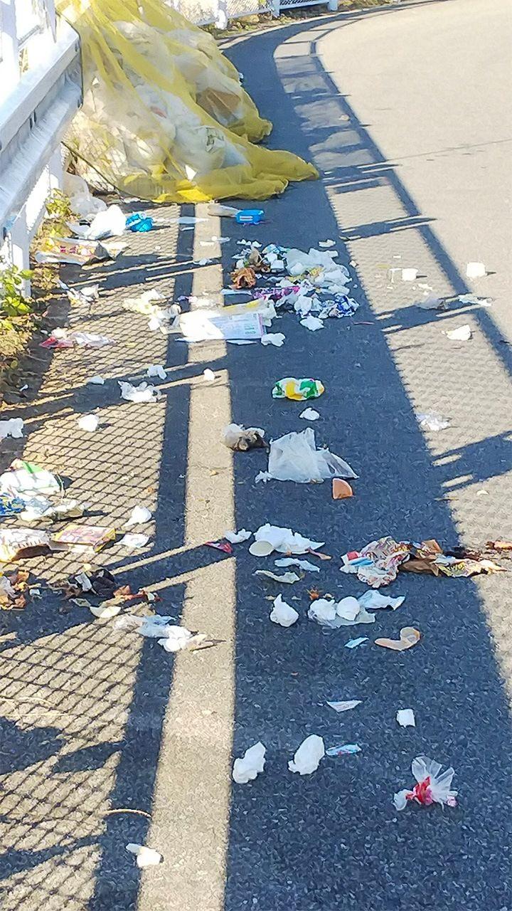Помойка после набега ворон. В поисках пищи вороны вытаскивают мешки с мусором через щели защитной решётки и разрывают их