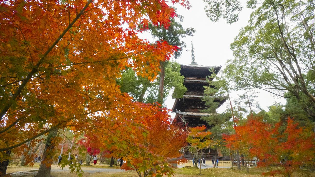 Пятиярусная пагода храма является важным национальным культурным достоянием