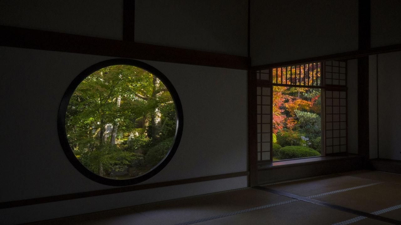 Окно мудрости (слева) и окно растерянности (справа)